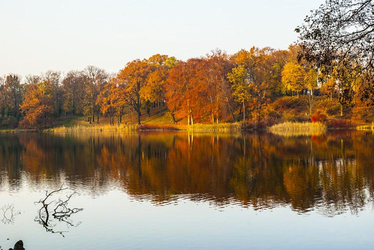 foto_petzow_schlosspark